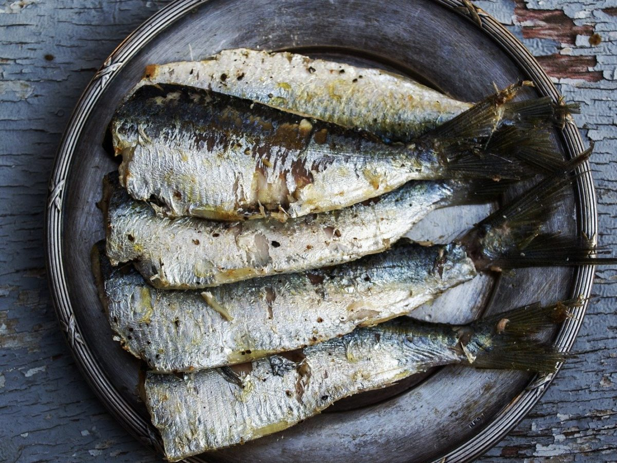 plate_sardines